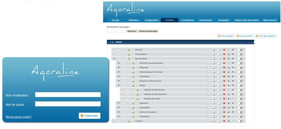 Capture interface de gestion de contenu de site web