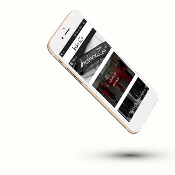 Mockup sur iphone du site internet Indecize